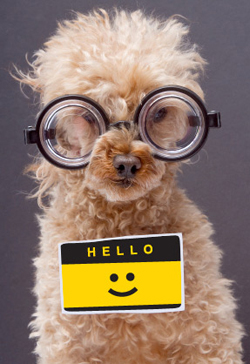 Tips for making a good impression with new coworkers